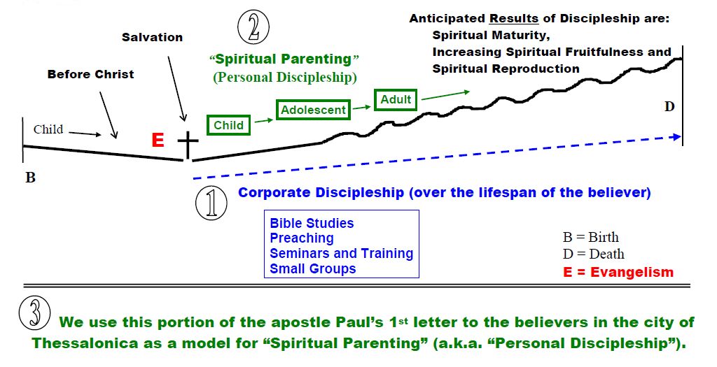 Biblical Model for Discipleship