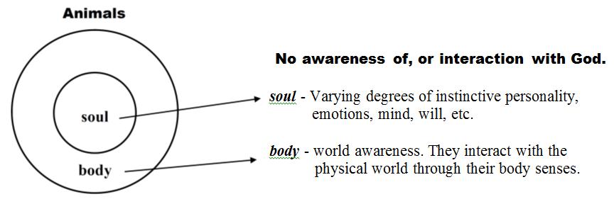 Spiritual Anatomy Of A Christian
